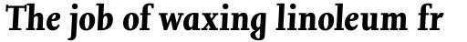 Joanna Nova Bold Italic sample