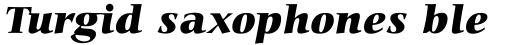 Carmina BT Black Italic sample