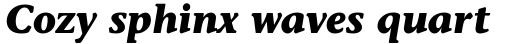 Stone Informal Bold Italic sample