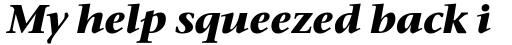 Stone Serif Bold Italic sample
