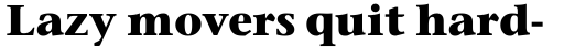 Stone Serif Bold sample