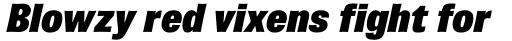 Brown Pro ExtraBlack Italic sample