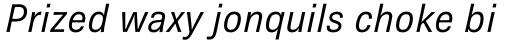 Brown Pro Italic sample