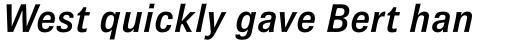 Brown Pro SemiBold Italic sample