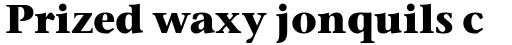 Stone Serif OS Bold sample