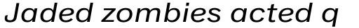 Classic Grotesque Pro Ext Italic sample