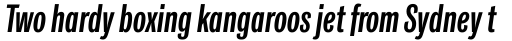 Classic Grotesque Pro Cm SemiBold Italic sample