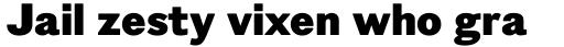 Figgins Standard Black sample