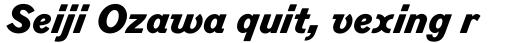 Figgins Standard ExtraBold Italic sample