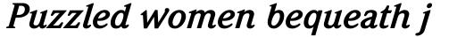 Weidemann Bold Italic sample