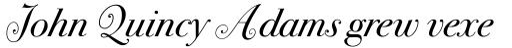 ITC Bodoni Seventytwo Swash Book Italic sample