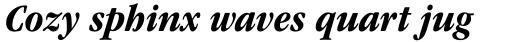 ITC Garamond Std Bold Narrow Italic sample