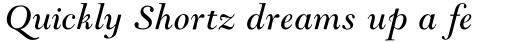 Goudy Modern MT Italic sample