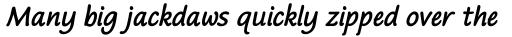 Bradley Texting Pro Bold Italic sample