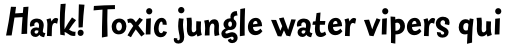FF Fontesque Sans Std Bold sample