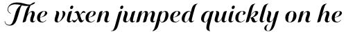 Elicit Script Bold Formal sample