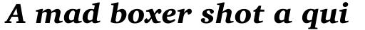 Charter OSF Black Italic sample
