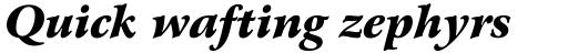 Arrus OSF BT Black Italic sample