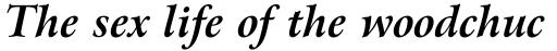 Arrus OSF BT Bold Italic sample