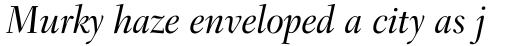 Transitional 551 Medium Italic sample