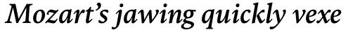 FF Kievit Serif Medium Italic sample