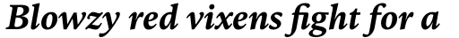 FF Kievit Serif Bold Italic sample