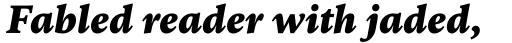 FF Kievit Serif Black Italic sample