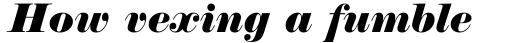 Normande Italic sample
