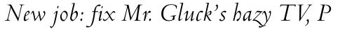 Venetian 301 Italic sample