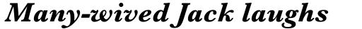 Baskerville MT Bold Italic sample