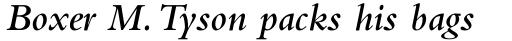 Bembo SemiBold Italic sample
