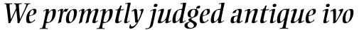 Ellington MT Italic sample