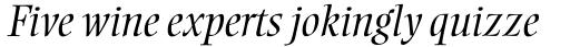 Ellington MT Light Italic sample