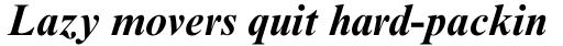 Times New Roman PS Bold Italic sample
