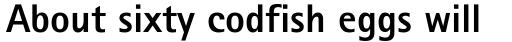 Rotis Sans Serif ExtraBold sample
