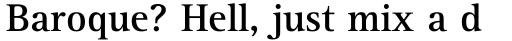 Rotis Serif Bold 65 sample