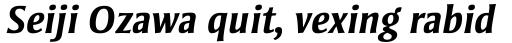 Strayhorn MT Bold Italic OsF sample
