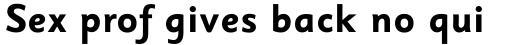 Sassoon Sans Bold sample