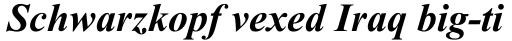 Times New Roman MT Bold Italic sample