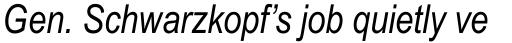 Arial Narrow Italic sample