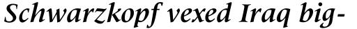 Latin 725 Bold Italic sample