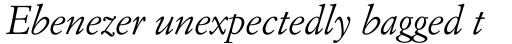 Italian Garamond Italic sample