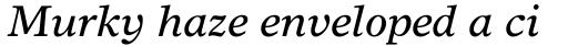 Times Europa Italic sample
