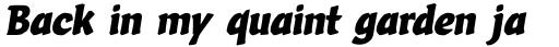 Vario Italic sample