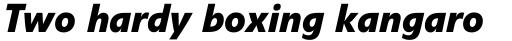 Veto Bold Italic sample