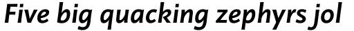 Linotype Projekt Bold Italic sample