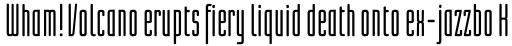 Linotype Lichtwerk Bold sample