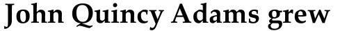 Palatino Linotype Bold sample