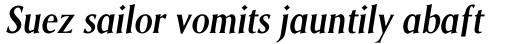 Saga SemiBold Italic sample