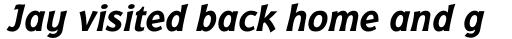 Badger Bold Italic sample